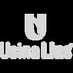 log_usina_lins_edited.png