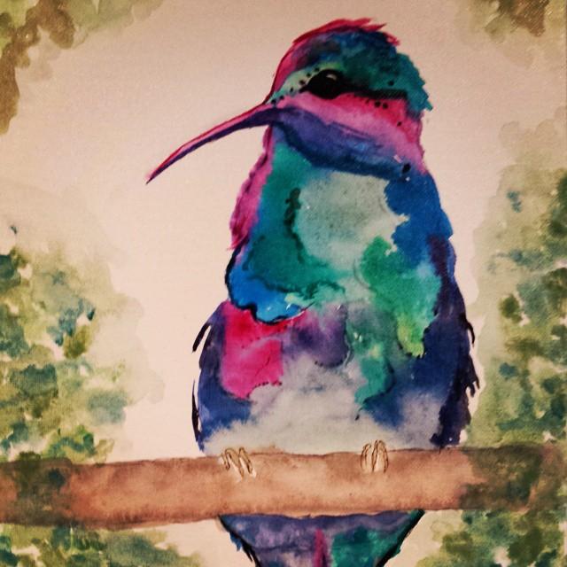 My sweet hummingbird