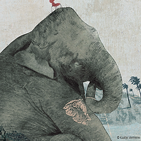 elephant-a-une-question-kaatje-vermeire-