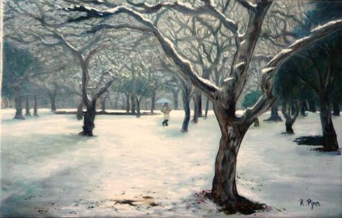 A walk in the snow, winter landscape