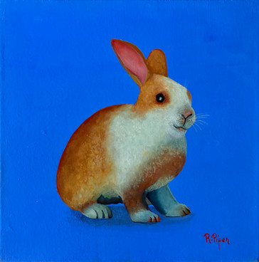 A cute bunny, painting for baby.