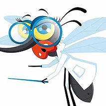 visuel-moskitofree.jpg
