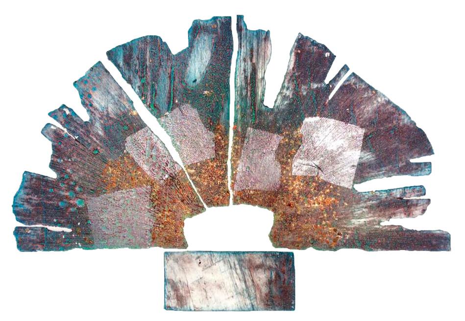 Fossil Flower