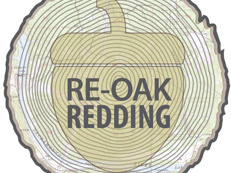 Redding Launches Re-Oak Campaign Following Carr Fire