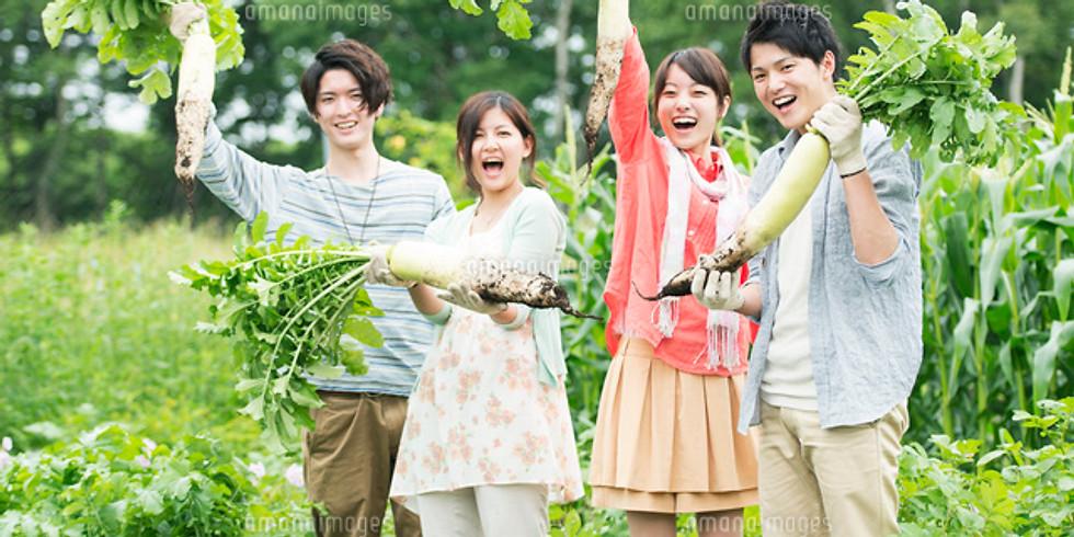 【婚活パーティ】健康と婚活!マクロビ野菜コン