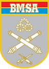 BMSA.png