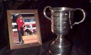 Hildie Award.png