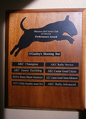 Astro's Awards Plaque.jpeg