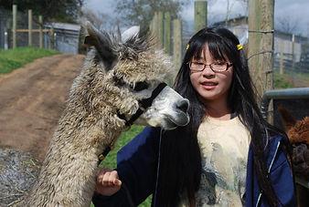 Kid and Alpacas- Alpaca Country Estates friendly babies