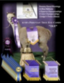 Ike Awards.jpg