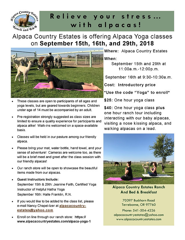 Alpaca Yoga Flyer Combined Classes - Sep