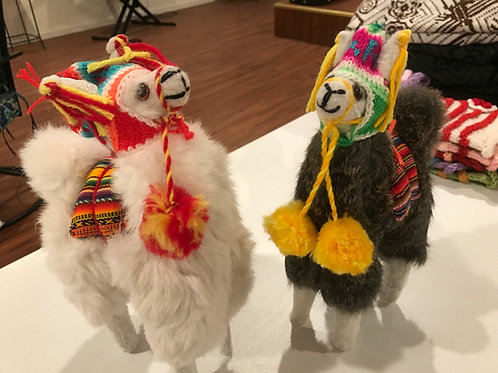 Peruvian Alpacas Wearing Chullo Hats
