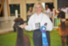 Alpaca wins with Nancy Chapel