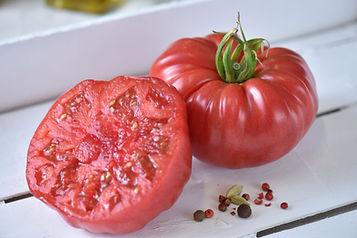 GAUTIER Tomate MARPINK RP574.jpg