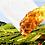 Thumbnail: Les Desseins du bonhomme