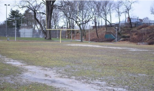Sign the petition to retore Elmont Rd Park!