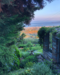 Garden view down past pergola