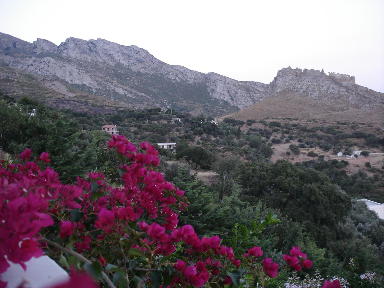 The village of Mekounida