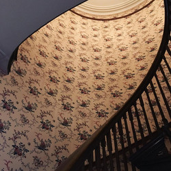 The gorgeous spiral wooden stairwell