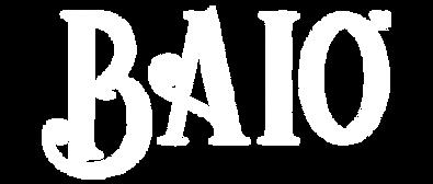 Baio-Digital-Marketing-e-Social-Media-ag