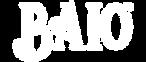 baio-logo-agencia-digital-gaucha-marketi