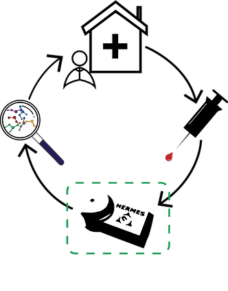 HERMES process flow bw2.png