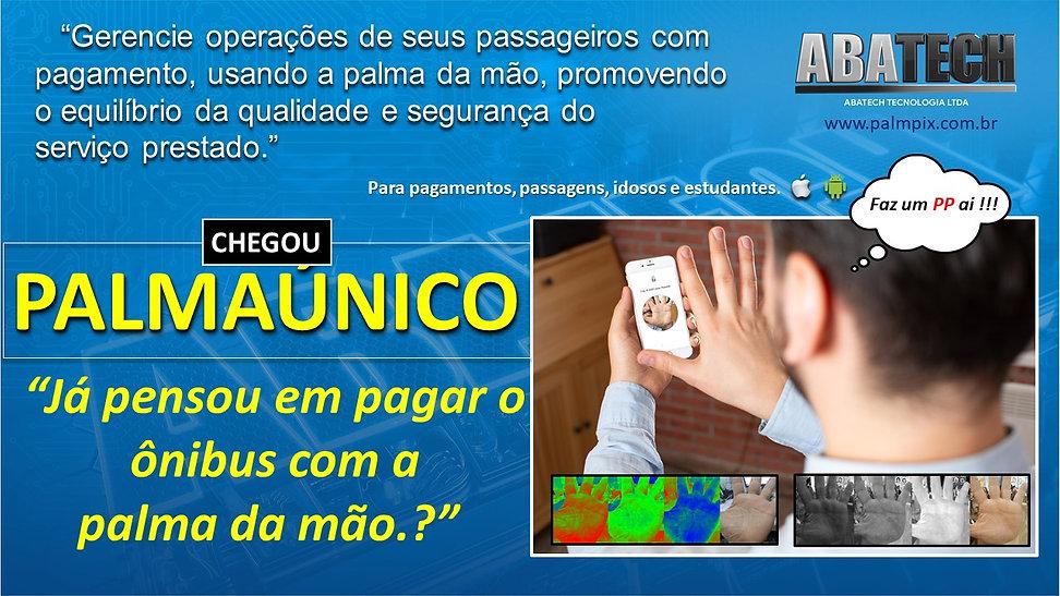 palmaunico web 4.jpg