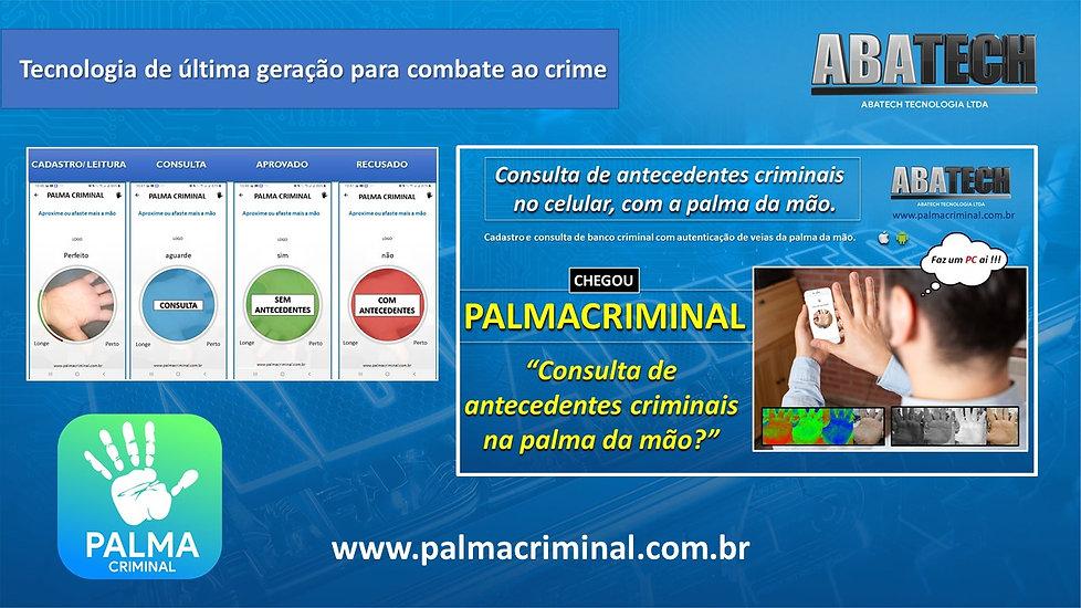 palma criminal v3.jpg
