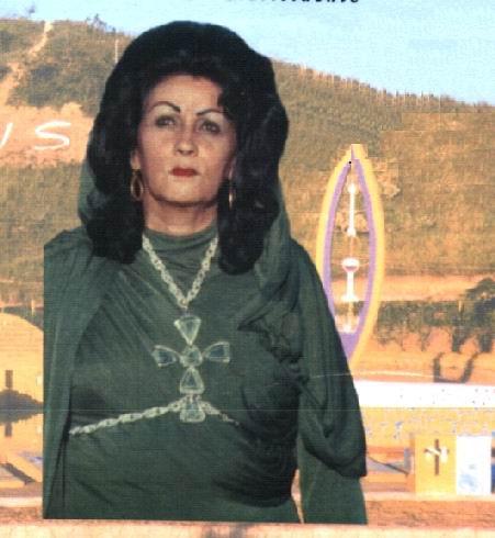 344 c www.tianeiva.com.br
