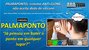 PALMAPONTO.jpg