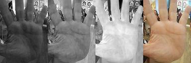 palma da mao 2.jpg