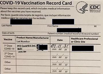 Palmasaude carteira de vacina americana.