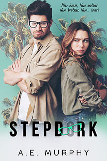 STEPDORK EBOOK.jpg