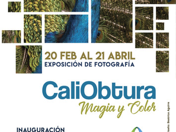 Exposición de fotografía CaliObtura Magia y Color