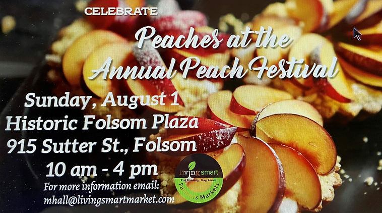 Peach Festival kiosk_edited.jpg