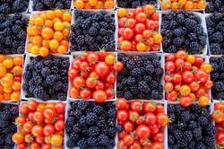Tomatoes & Berries