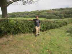 Scotney Hedge After