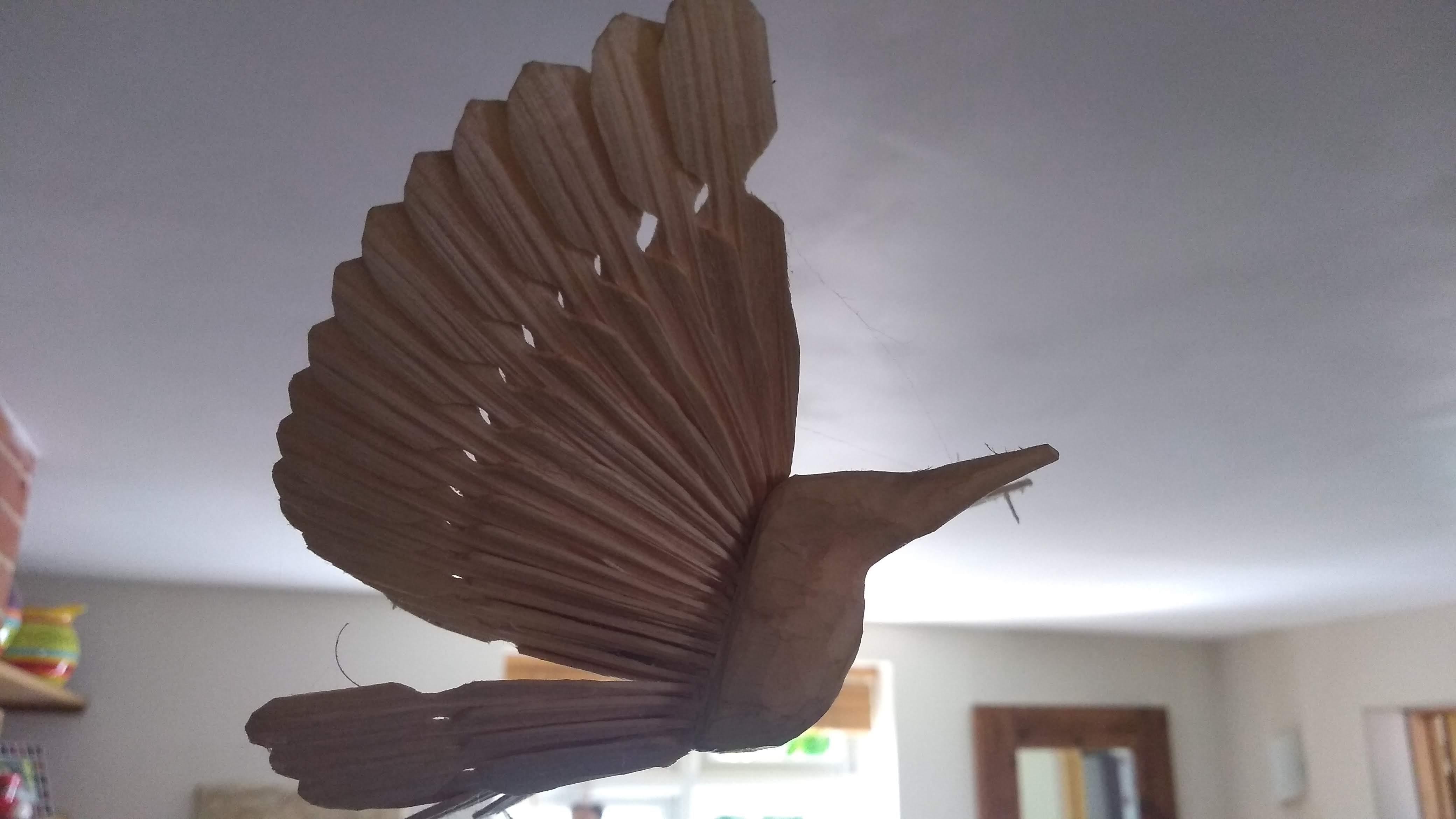 Fan bird