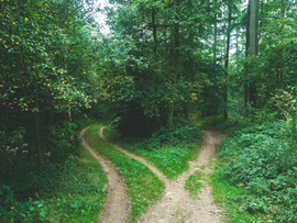 Which Path Will You Take in Modern Business Relationships?