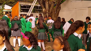 Learning in shades of green