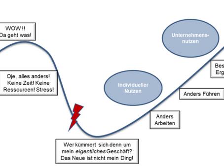 Agile Organisationsentwicklung in der Praxis