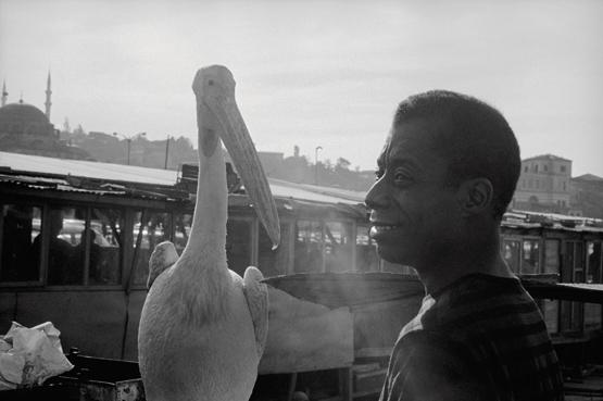 Yaşar Kasım'ın pelikanıyla Baldwin