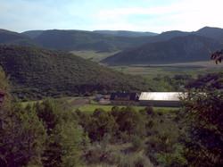 56 Acres of beautiful Colorado
