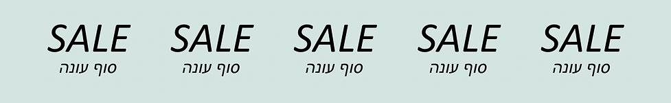 סייל סוף עונה 2.png