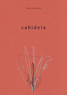 Cabidela