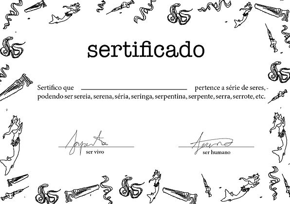 sertificado.jpg