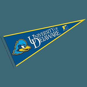 ud_fighting_hens_pennant_blue.jpg