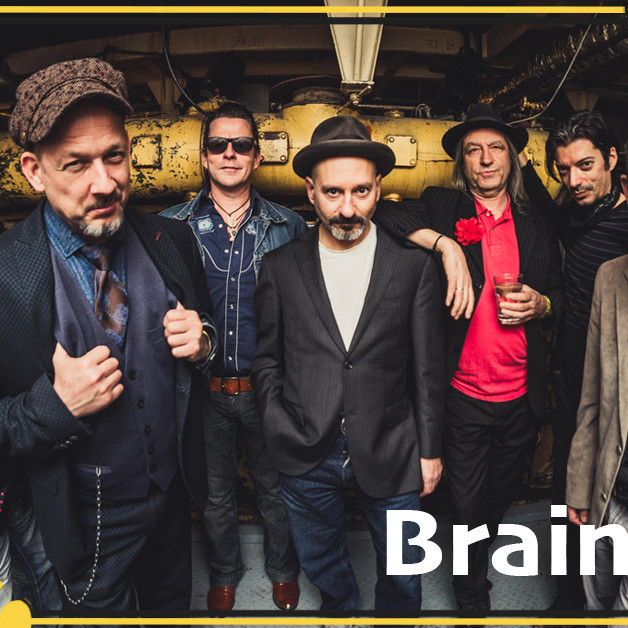 Braindogs