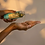 Thumbnail: Shankara Muscle Release Oil (30ml)