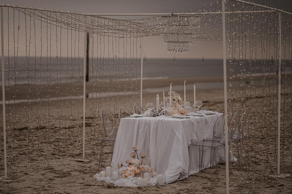 Destination Wedding Planner.jpg